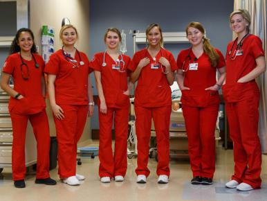 Opportunities Abound for Health Services Research Training for Nurses